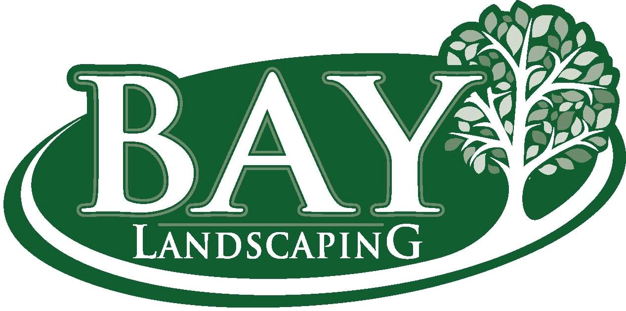 Bay - Logo color without slogan